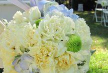 Wedding Ceremonies / We love having outdoor wedding ceremonies in our gardens!    To check out our wedding rental packages visit us at http://garimelchers.umw.edu/rentals/weddings/