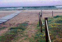 Mis playas, mi mar