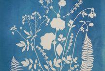 Sunprinting Fabric