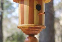 nid oiseaux