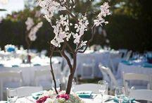 Aspen's Wedding
