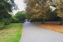 Mood changed. Same as Weather. #inbetween #trees #autumn #summer #nature #naturephotography #travel #travelphotography #travelgram #planner #explore #explorer #england #london