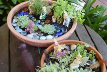 Fairy garden and gnomes