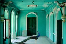 Tranquil Turquoise  / by SueStitches