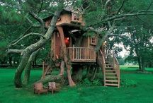 Treehouses and forts