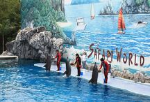 Safari World Tour / The Kingdom of Thailand is the most popular tourist destination in South East Asia. We Tour Thailand provides travel services in Thailand, Bangkok, Pattaya etc.