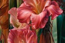 obrazy květy