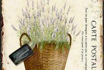 Lavender / decoupage