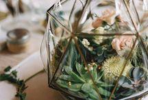 Террариумы / Вечнозеленые террариумы – тренд этого свадебного сезона! Декор свадебного помещения это очень сложный процесс. Ведь основное празднование происходит именно в ресторане. И очень важно оформить его правильно, красиво и со вкусом.  Хит этого свадебного сезона это «Натуральность» и растительность играет большую роль в оформлении такой свадьбы.