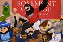 Renny the Raven / by Rosemont College