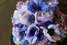 Bouquet of flowers / All kind of flowers put together