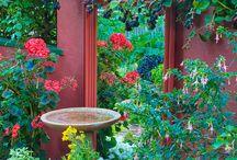 Houses - Garden Ideas