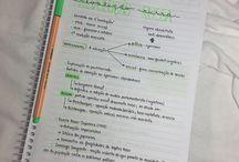 ideias de estudo