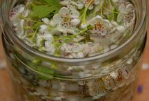 Herbs ~Recipes