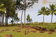 Soul Travel--Hawaii / Sacred places in Haiwaii