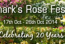 Renmark Rose Festival 2014