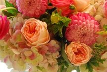 Flowers and deco