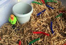 Preschool - Birds