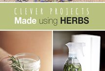 DIY with herbs