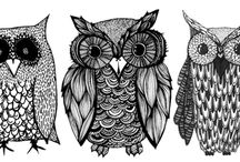 Love Owls / They are everywhere <3