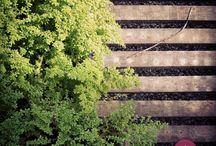 Foto arte no Primavera Garden / O pessoal adora tirar fotos no Primavera Garden. Algumas resultam em imagens artísticas lindas! #primaveragarden #plantas #flores #garden #jardim