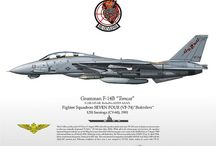 Tomcat: So long, Baby. / Good bye to the best airframe ever.