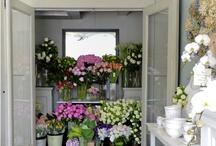 цветочый магазинчик
