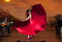 Flamenco / danza - musica flamenca