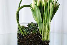 Blommerangskikkings