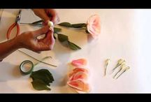 Video flori