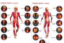 Fibromyalgia & Myofacial Pain Syndrome / by Carrie Waddill