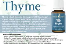 Young Living Thyme Essential Oils