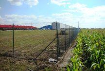 Domeniul Agricol / Proiecte Decorio-Domeniul Agricol