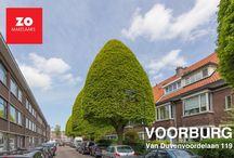 Voorburg / Van Duvenvoordelaan 119