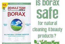 Green Cleaning / environmentally friendly cleaning, safe for the home, free of toxic chemicals, home made and DIY cleaning too.