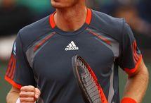 Andy Murray / Tenisz