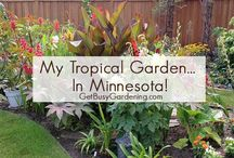 Gardening Design / Whether you have a large backyard or a small space, grow in raised beds, or you want to build a low maintenance garden, you'll learn how to design beautiful gardens, and make simple DIY layout plans for beginners on a budget. Find tons of awesome tips, ideas, inspiration and easy tutorials for how to grow vegetable, flower, butterfly, perennial, shade, herb and tropical plants in any garden.