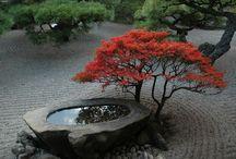 Japanese garden details