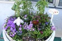 gardening / by Leora Murray