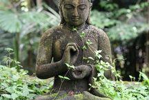 zen budha gardens