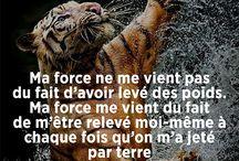 citation:-)