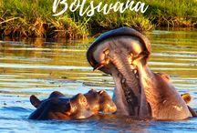 Travel: Botswana