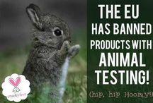 Environmental Awareness / We strive to be responsible citizens - to do this we work hard to be not only organic but also as friendly as possible to all animals and to the Earth. We support any movements against animal testing and choose our products based on their stance against animal testing. Let us know of any salon products you have that have these ethics!