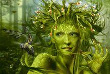 Elfen en andere / De wondere wereld Elfen, draken, zeemeerminnen, kabouters, nymfen, bosgeesten, kabouters en nog veel meer