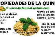 Alimentos que curan y propiedades