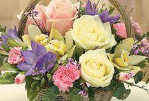 srreglos florales