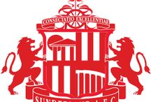 Sunderland AFC / #SunderlandAFC #SAFC #HawayTheLads