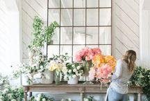 virágok- növények