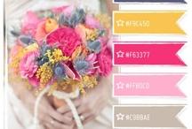 Colors :: Kleur