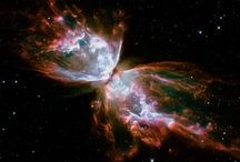 Stardust / Galaxy